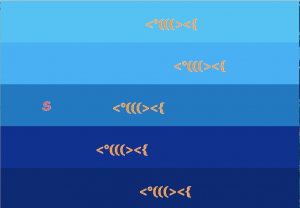 project_fishes