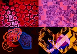 Stills of four of Lillian Schwartz's animations