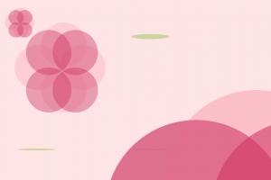 Initial Color Scheme